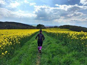 37. Harzquerung 2016 - 51 km von Wernigerode nach Neustad